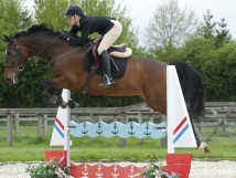 One of our more unusual showjumps